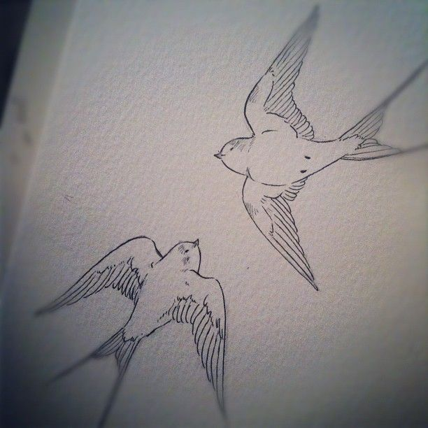 Swallow tattoo commission - @devonannasmith- #webstagram