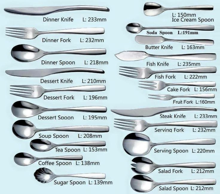 Different types of utensils | Daily life General Knowledge ...