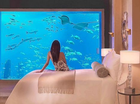 The Atlantis, Dubai.  Only TWO suites are underwater, the  Neptune and Poseidon.  This is an image from one of the suites, as shown on the official Atlantis.com site.  #dubai #hotel #uae