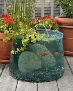 Outdoor aquarium pond planter. Because I don't think the gold fish I gave Josh 3 years ago will EVER die and he'll need a nicer home :D