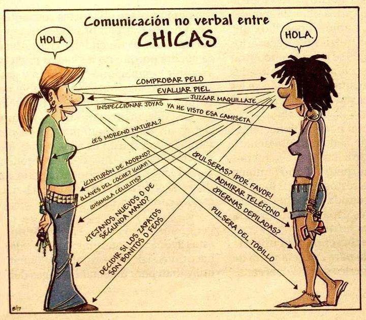 Comunicación no verbal entre Chicas: Jokes, For, Communication, Women, Funny, Humor, Phrases, Entre Chicas