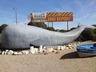 My Australian Adventure: Big Things • the big whale at Eucla • aussie big things Australia