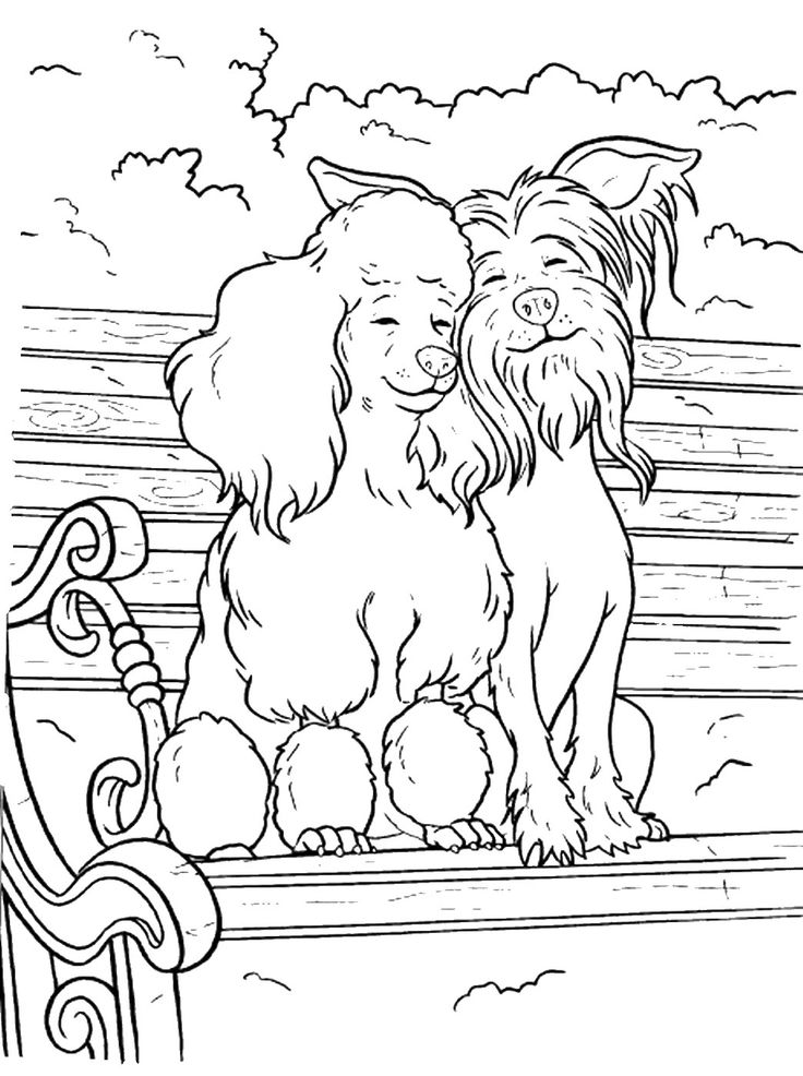 The 103 best Coloring Pages (Dogs, Wolves, Foxes) images on ...