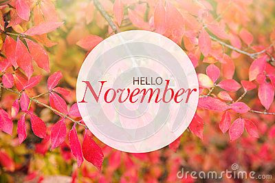 Hello November Banner - Download From Over 49 Million High Quality Stock Photos, Images, Vectors. Sign up for FREE today. Image: 79325431