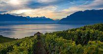 32 most enjoyable hikes - Switzerland Tourism
