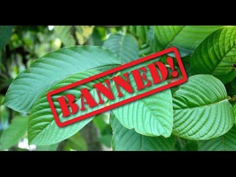 DEA to List Kratom Schedule 1 # freedomofjoyceshow #kratomsaveslives Tuesday - DEA plans to ban #Kratom by classifying it as a schedule 1 drug in the US on September 30, 2016. This is the topic of discussion on the Freedom Of Joyce Show with guest Dereck Connors from Dayak Chill Spot. Despite DEA claims that kratom is highly addictive and has no medical value, millions of people have started using it for medicinal and opiate addicton problems. Several Kratom patients called into the show...