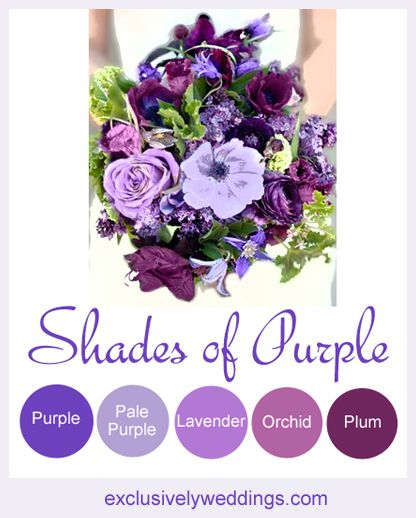 Your Wedding Color - Don't Overlook Five Luscious Shades of Purple. Read more: http://blog.exclusivelyweddings.com/2014/04/20/your-wedding-color-dont-overlook-five-luscious-shades-of-purple/