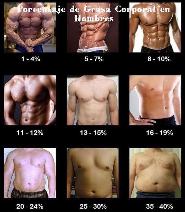 mejores formas de perder porcentaje de grasa corporal