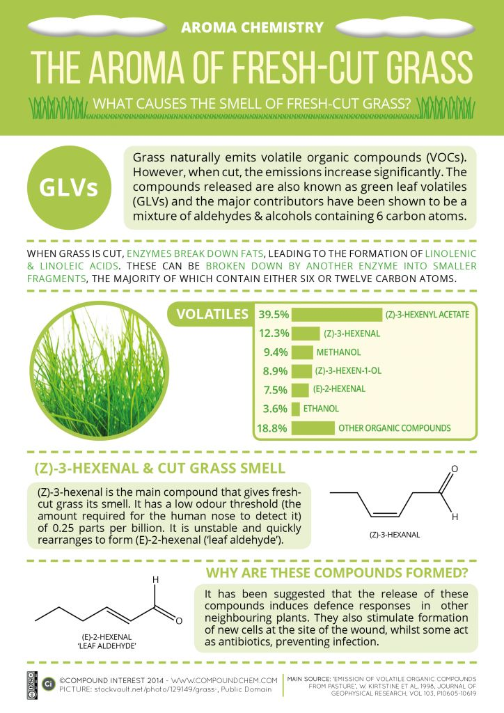 #Aroma #Chemistry - Fresh Cut #Grass http://www.compoundchem.com/2014/04/25/what-causes-the-smell-of-fresh-cut-grass/