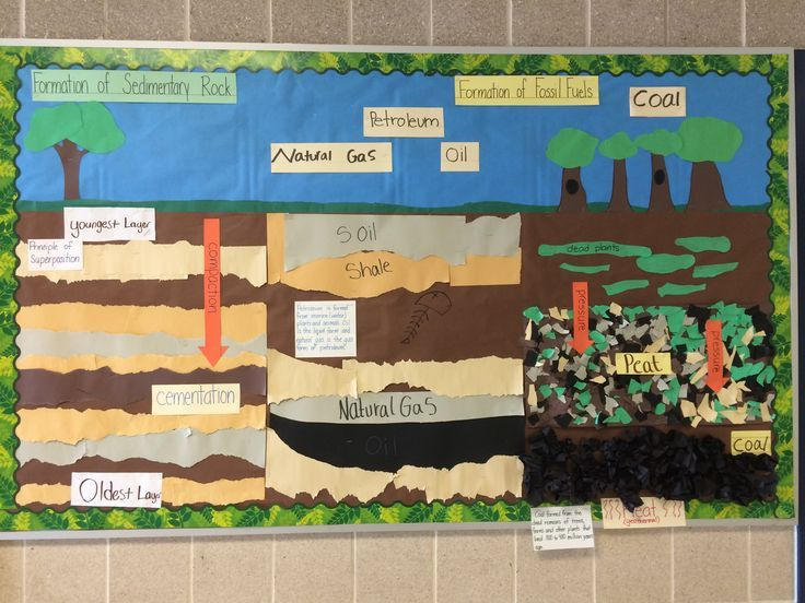 Interactive word wall; formation of sedimentary rock and fossil fuels TEKS 5.7A Ideas to add: a drill for the oil; evidence of past to fossil; the words: layers, vegetation, organisms; definition/description for compaction & cementation