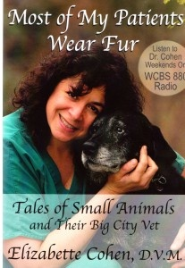 """Did you know that becoming a veterinarian is actually more difficult than becoming a doctor? Dr. Elizabette Cohen explains how vets need to learn the anatomy of so many different animals. This book is written with humor, education, and is a great quick read. I for one, found there's alot of info I just didn't know about. For more about Dr. Cohen's Book, """"Most of My Patients Wear Fur, Tales of Small Animals and Their Big City Vet"""" go to www.bjbangs.net (Paws for Reflection)"""