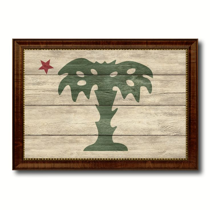 South Carolina Palmetto Guard Military Flag Texture Canvas Print with Brown Picture Frame Home Decor Wall Art Gifts