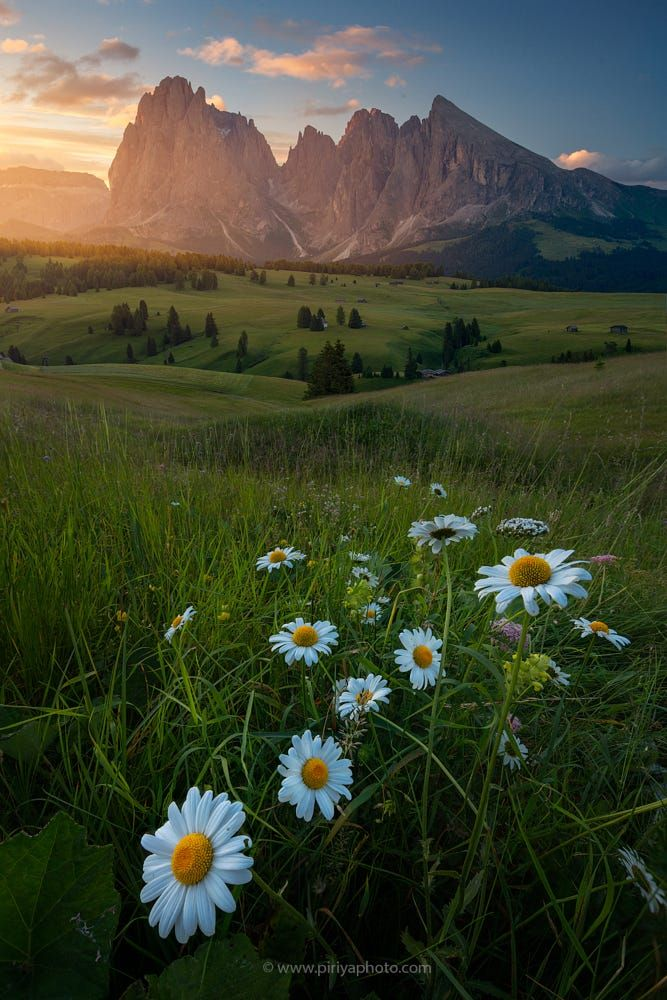 Alpe di Siusi by Pete Wongkongkathep on 500px