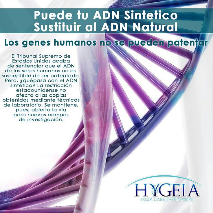 """El ADN celular es el que se encuentra en las células de nuestro organismo. Procede de la herencia que hemos recibido de nuestros padres.   Se puede manipular, modificar y ayudarnos a desarrollar herramientas para ayudar en el diagnóstico de mutaciones de otros pacientes distintos"""", Donde sí tendrá mucha importancia es para clonar los genes y tratar de encontrar las funciones que estos genes llevan a cabo dentro del organismo."""