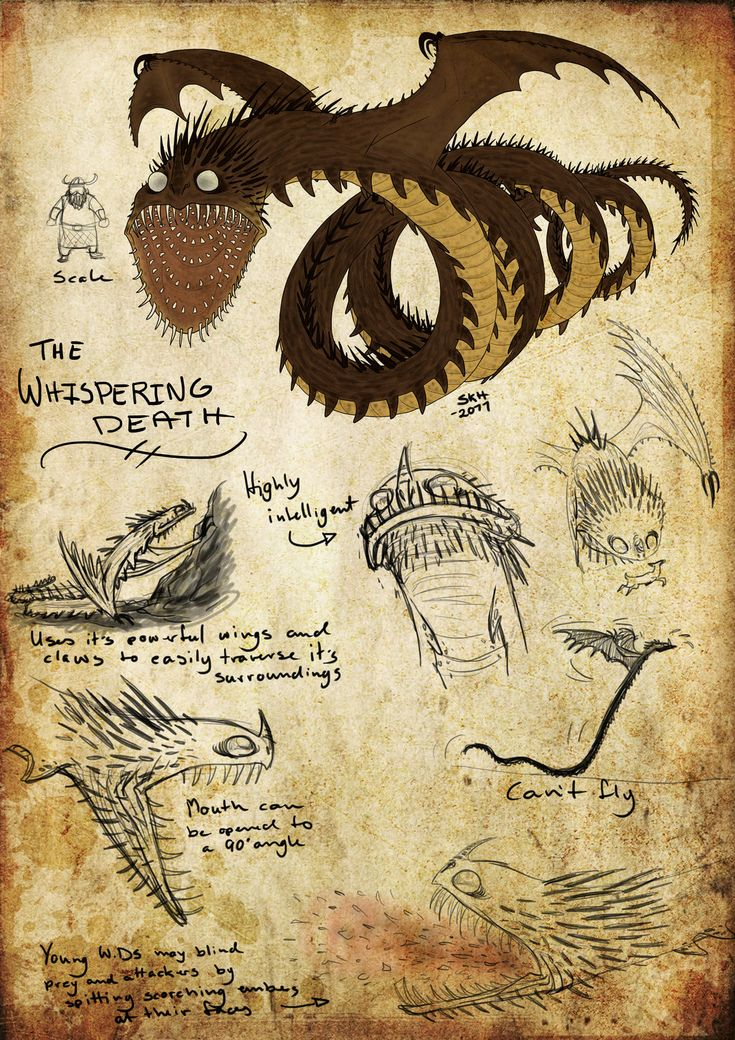 142 best dragon images on Pinterest | Train your dragon, How to ...