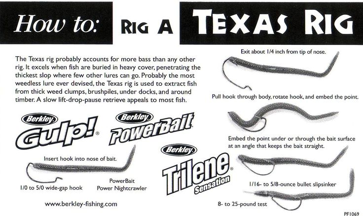 Texas rig angeln pinterest rigs and texas for Bass fishing setup