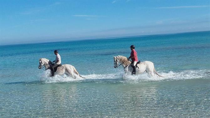 Randonnée à cheval, Salou - Costa Dorada (Espagne)