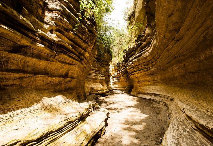 Hell's Gate National Park (Naivasha)