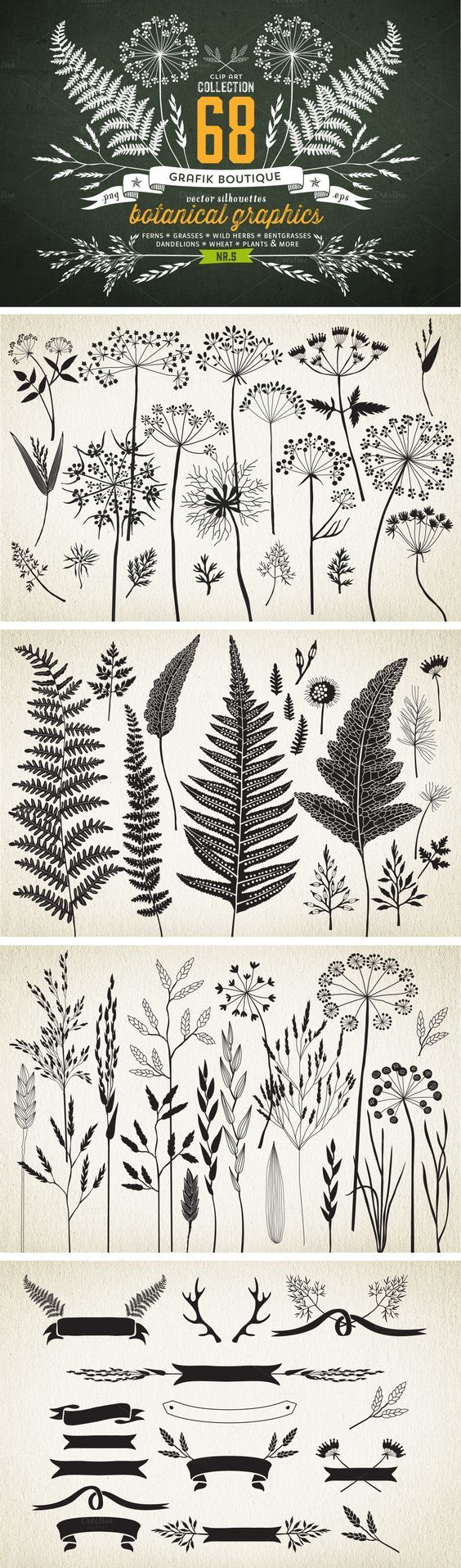 Botanical element illustrations... *IDEA* try printing to give a sense of surroundings? or layering in lively scrapbook format?: