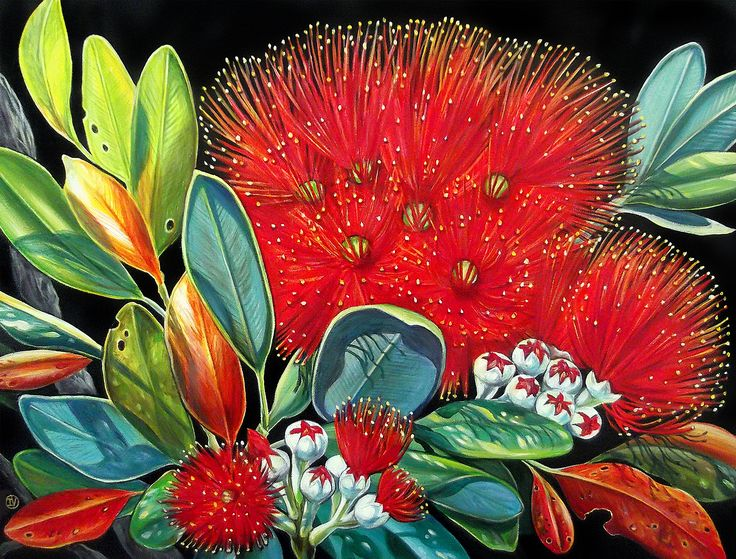 Summer Red by Irina Velman. Artprints from www.imagevault.co.nz