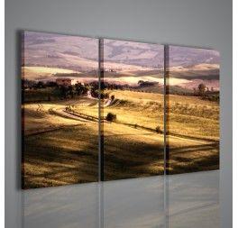 Una splendida foto trasformata in quadro tramite stampa su tela con soggetto una campagna toscana.