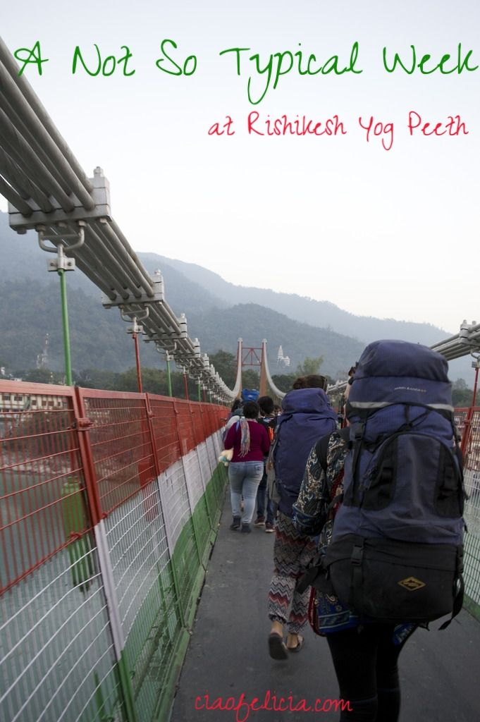 A look into what a week at yoga school in India looks like!  The typical and not so typical things that happened in a week during a YTTC 200 at Rishikesh Yog Peeth,