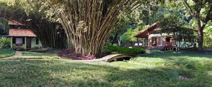 """Em um sítio localizado na Ilha Grande (RJ), a junção de dois terrenos deu lugar a um jardim que integra e faz a comunicação entre as casas da propriedade por caminhos de pedra, pontes e grama preta (Ophiopogon japonicus), também conhecida como grama japonesa ou pelo-de-urso. O bucólico jardim é uma criação da arquiteta e paisagista Tania Manela Kurc, que levou o Prêmio Casa Claudia Design de Interiores em 2015, na categoria """"Jardins"""""""