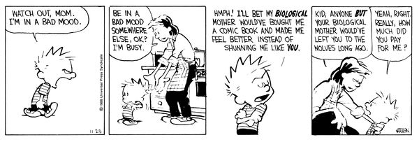 THE DAILY CALVIN: Calvin and Hobbes, November 25, 1988 - HMPH! I'll bet my BIOLOGICAL mother would've bought me a comic book and made me feel better instead of shunning me like YOU.  ...Kid, anyone BUT your biological mother would've left you to the wolves long ago.