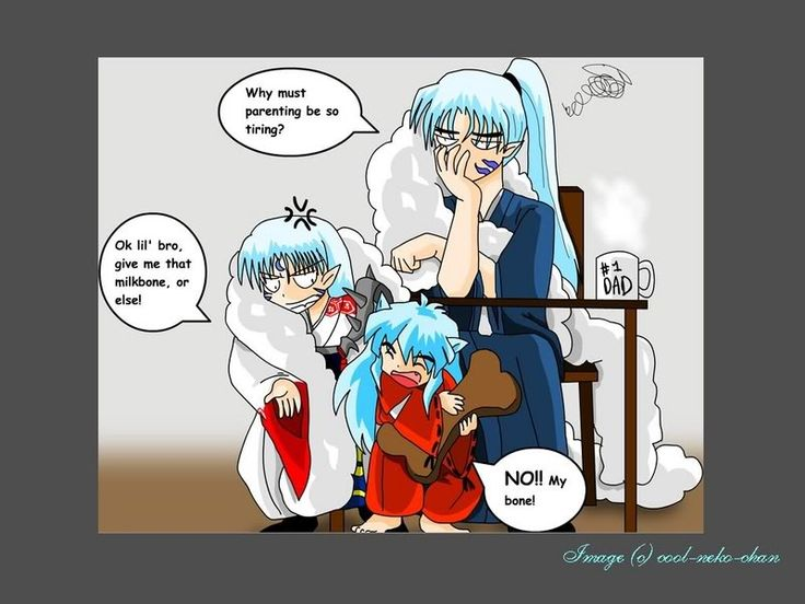 inuyasha, Sesshomaru, and Dad, funny