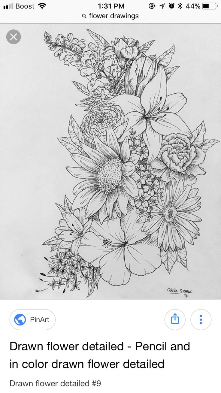 Pin by heather chayka on drawing pinterest