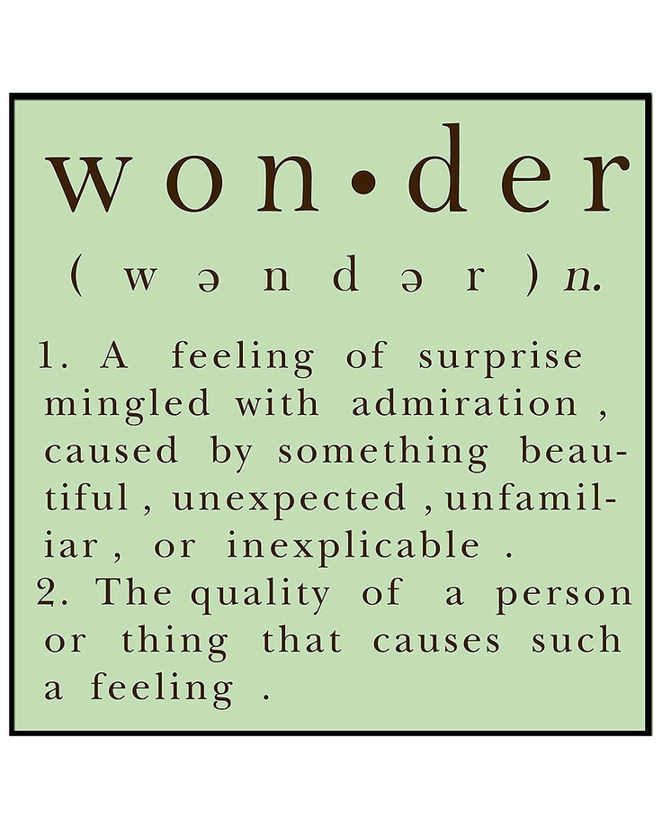 """""""God of wonder, enlarge my capacity to be amazed at what is amazing, and end my attraction to the insignificant."""" - Piper"""
