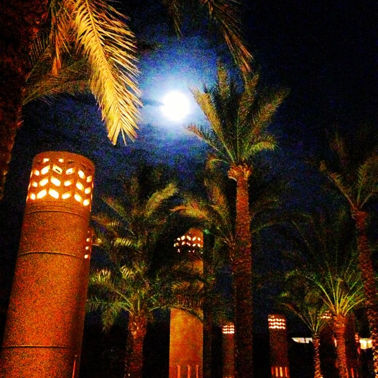 Night time in Egypt