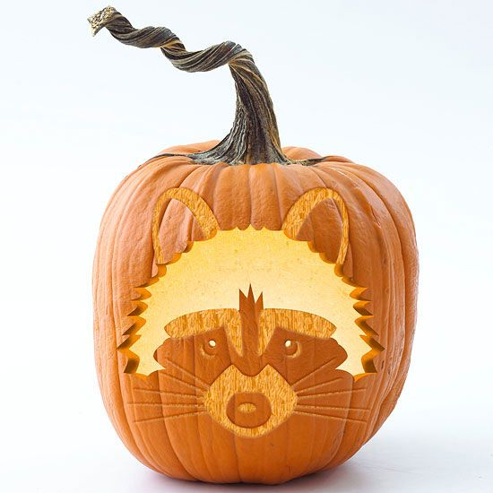 Raccoon Pumpkin Stencil + stencils for several other woodland animals