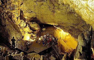 Jewel Cave Augusta - Your Margaret River Region