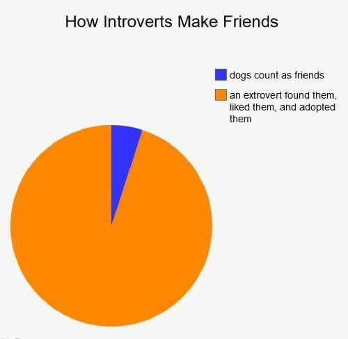 How introverts make friends - Imgur