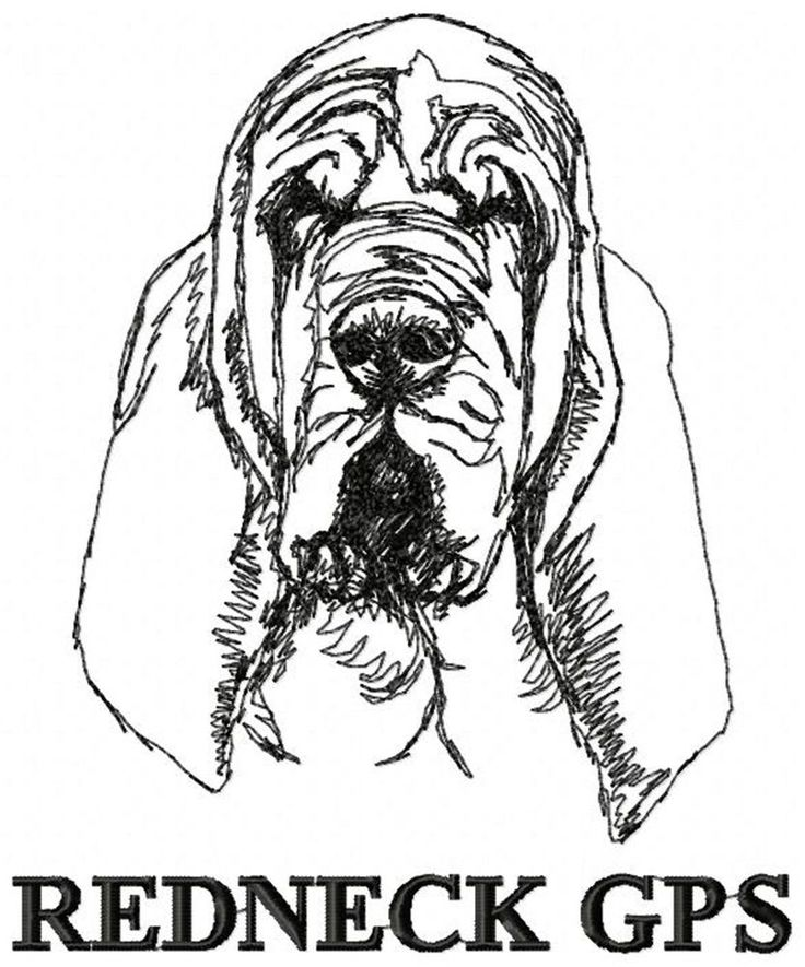 17 best ideas about Bloodhound on Pinterest | Bloodhound puppies ...