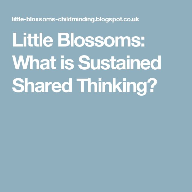 Little Blossoms: What is Sustained Shared Thinking?