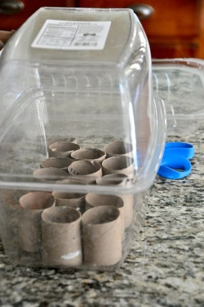 Another great idea to start seeds! Make a greenhouse out of a plastic container like this spinach container. Cut toilet paper rolls and plant the seeds in them. Once the seeds grow into plants, you can just put the roll into the ground! Love this!