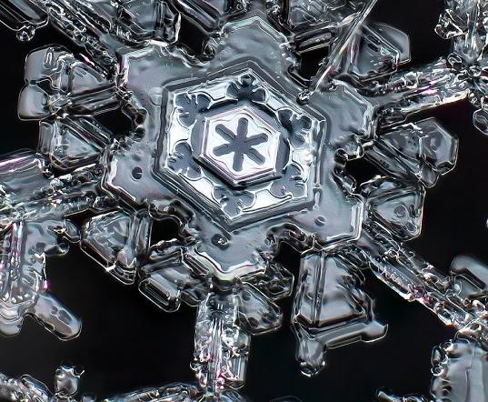 Amazing snowflake photos