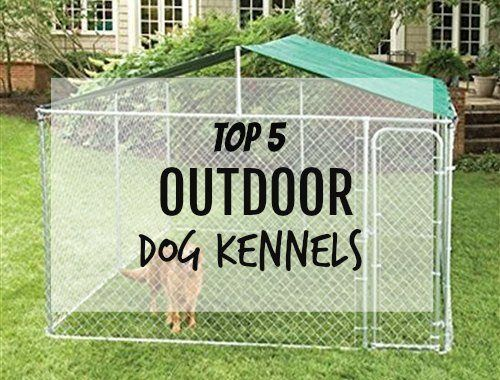 We did the detailed comparisons of the best selling outdoor dog kennels for you, so check them out above.