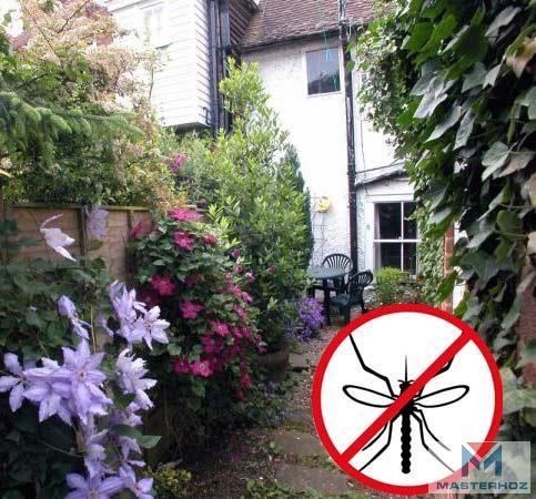 Какие растения отпугивают комаров?   Не нравится комарам и москитам запах томатной листвы. Почувствовав его, насекомые улетают. Поэтому, вы получите надежный барьер от насекомых, поставив несколько горшков с помидорными кустами на подоконнике или высадив кусты на улице перед окном.  В качестве такого же барьера можно использовать кусты бузины.  Если в горшках для цветков на подоконнике будет расти герань, то насекомые также не полетят в помещение. На открытые окна или форточки можно повесить…