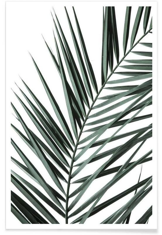 Phoenix en Affiche premium par Shot By Clint | JUNIQE
