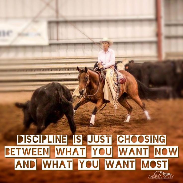 """Wise Words (by Andrea Otley) for Hard Workers ~ """"I don't necessarily like getting up at 5 am every morning to workout. My bed is so warm and snuggly and a nice place to be! But my horse and I are a team. If I expect him to be an athlete, I should be too. That's why I give up a little sleep and comfort - because I understand what I need to do to get what I want. It starts with me. If I can do it, you can too! (Pictured is my MIL. She works hard too. And her horse Smarty is an amazing…"""