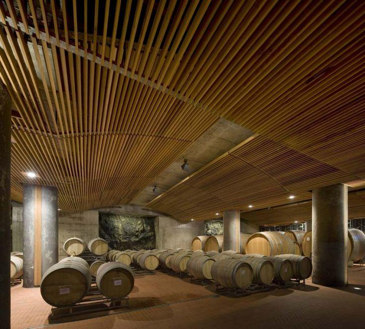 Cellar #Collemassari