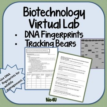 biotechnology internet virtual lab pinterest dna fingerprinting biotechnology and labs. Black Bedroom Furniture Sets. Home Design Ideas