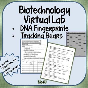 25+ beste ideeën over Dna fingerprinting op Pinterest - Biologie ...