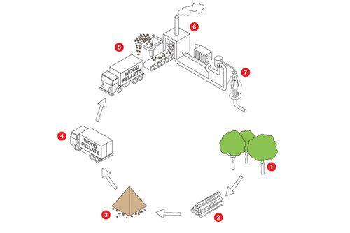 CROWN CAPITAL ECO MANAGEMENT Jakarta Indonesia : Den Biomasse kjele systemet  http://www.good.is/posts/crown-capital-eco-management--3 Biomasse Boiler Adresser konomiske bekymringer  Biomasse kjeler adressene konomiske bekymringer  Kjele-systemet ble utviklet for  markere hvor biomasse kan redusere eller eliminere bruken av fossilt brensel. Beskende kan se kjelen betjene igjennom spesialdesignet windows. I hallen like utenfor kjelerommet, sty niv og