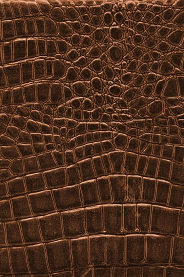 reptile scales/skin texture
