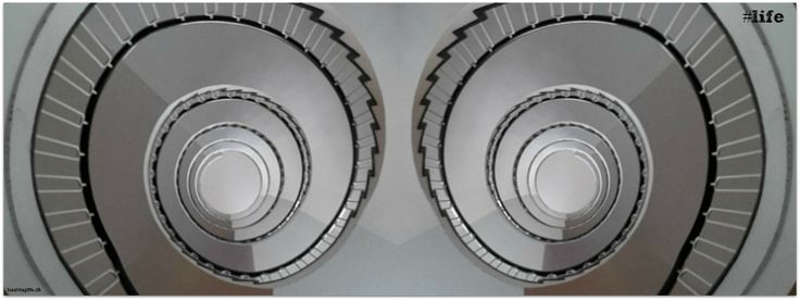 life-stairway.png (851×320)