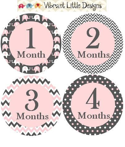 Hey, I found this really awesome Etsy listing at https://www.etsy.com/listing/197364985/monthly-baby-stickers-girl-monthly